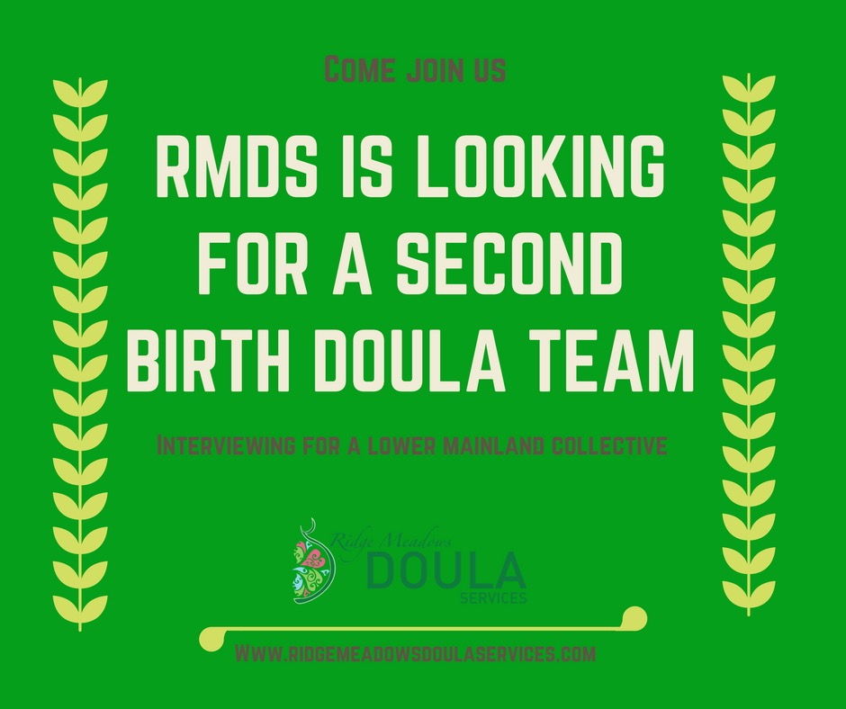 Hiring a new Birth Doula Team