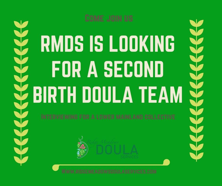 Hiring a new Birth Doula Team